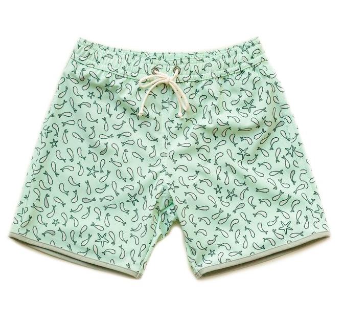 mint-swim-shorts