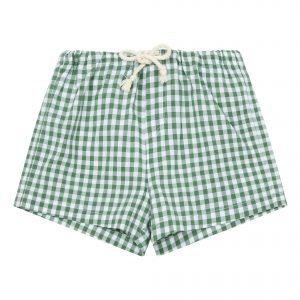 Green gingham swim shorts